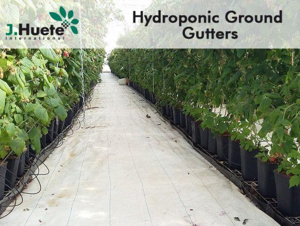 Hydroponic-Ground-Gutter