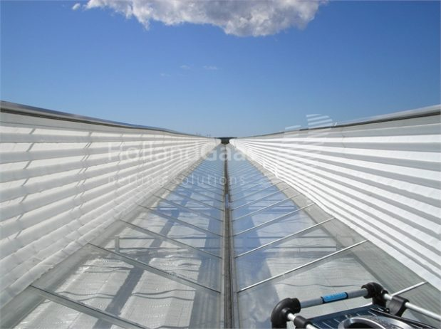 Insect-Bug-Netting-for-Venlo-Continuous-Ridge-Greenhouses