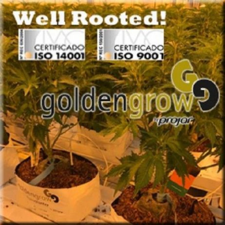 cannabis-growbags-iso-e64289ee-large