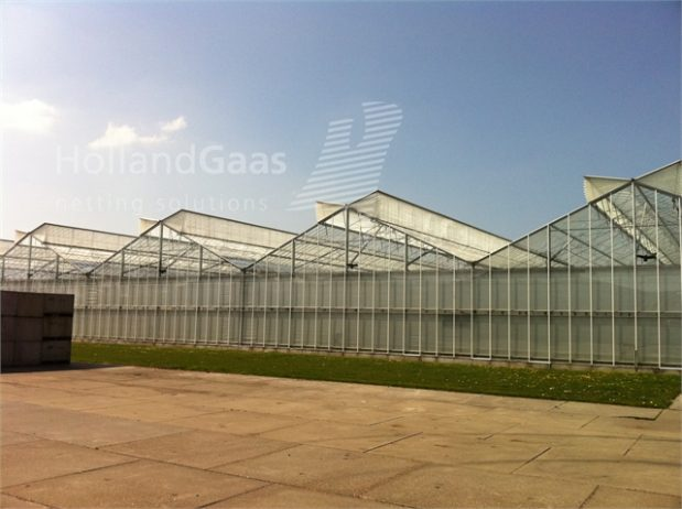 Insect-Bug-Netting-for-Widespan-Greenhouses03