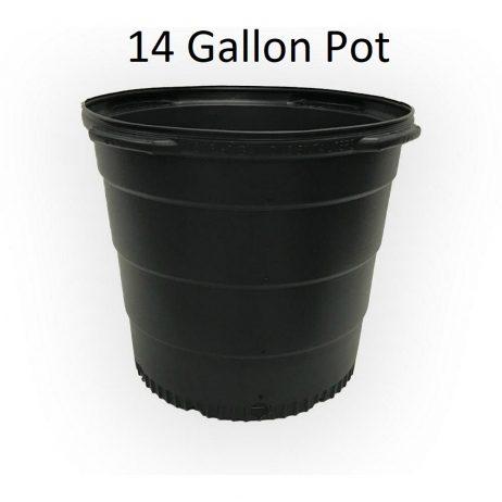 14-Gallon-Pot